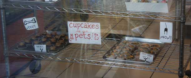 Cupcakes for your pets