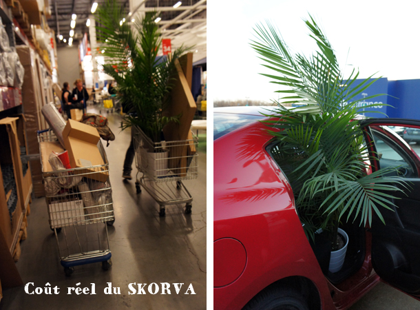 carte magasin ikea