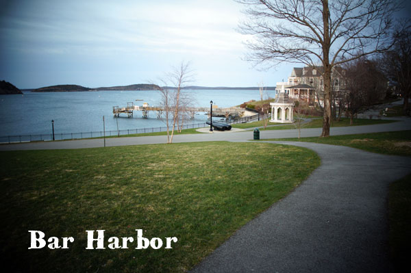 Bar Harbor Cafe
