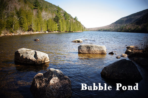 Bubble Pond - Acadia National Park