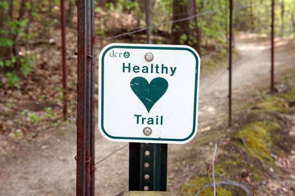 Healthy trail Walden Pond
