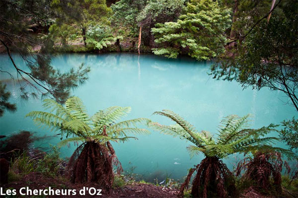 Blue Lake, Jenolan Caves - Les Chercheurs d'Oz