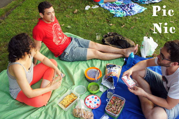 Pic nic 4th of July