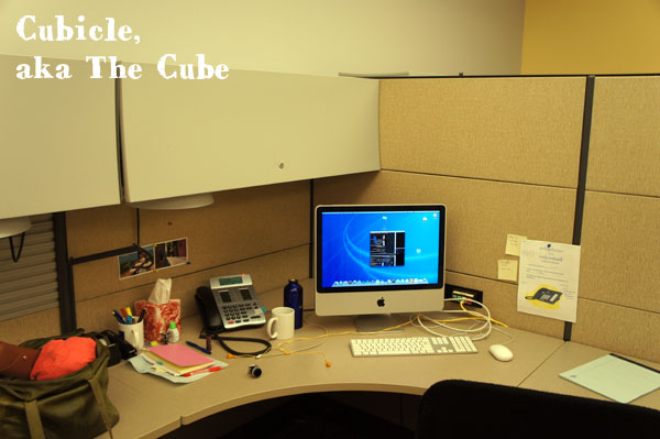 My cube aka The Cubicle