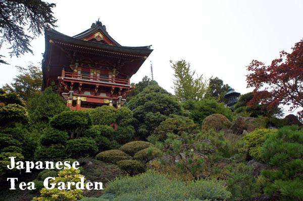 Japanese Tea Garden - San Francisco - www.maathiildee.com