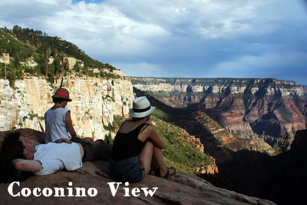 Coconino View - Grand Canyon