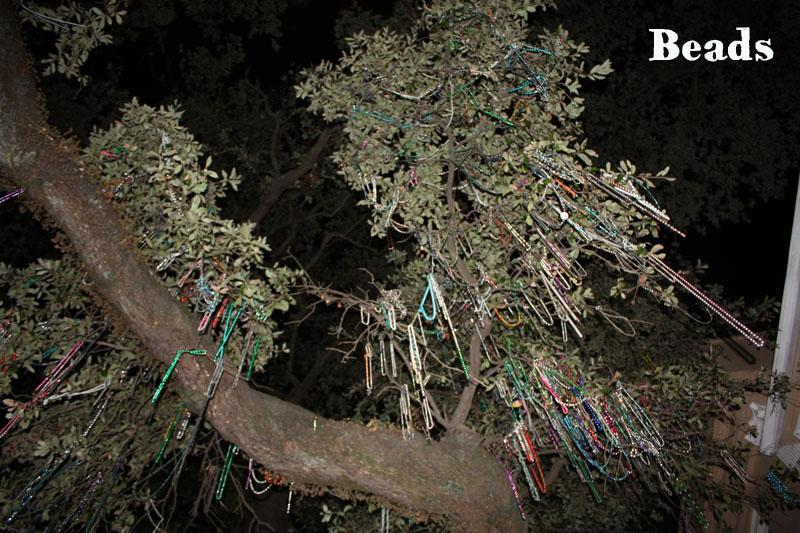Beads, les colliers de Mardi Gras, pendus aux arbres