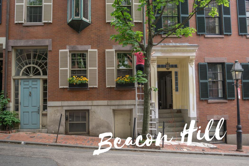 Le Guide Complet Pour Visiter Boston