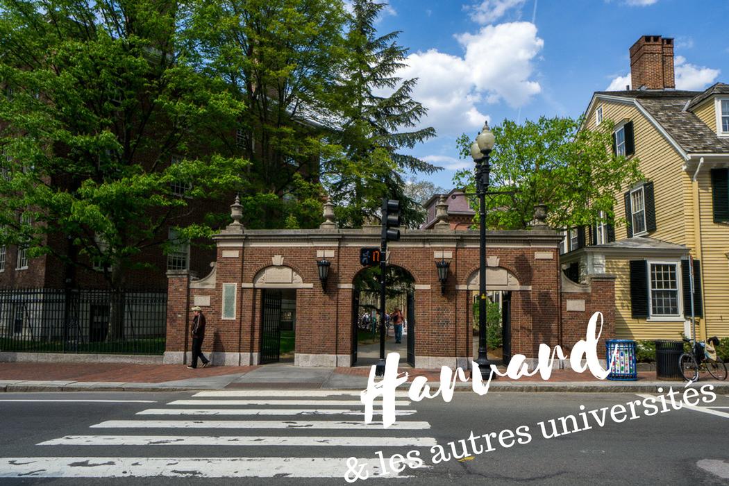 Harvard et universites