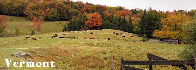 Vermont, Nouvelle Angleterre, Etats-Unis