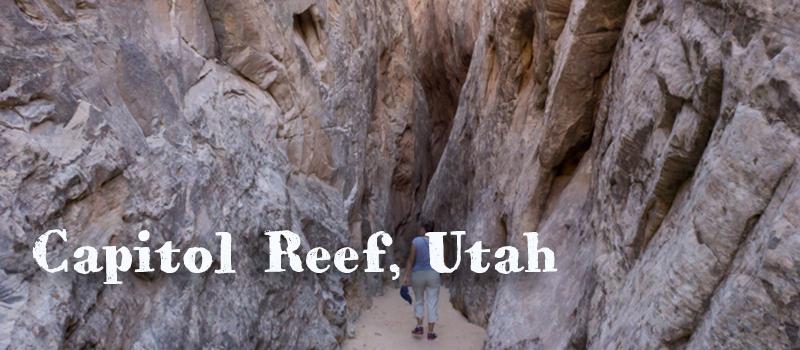 Capitol Reef Utah parc national américain