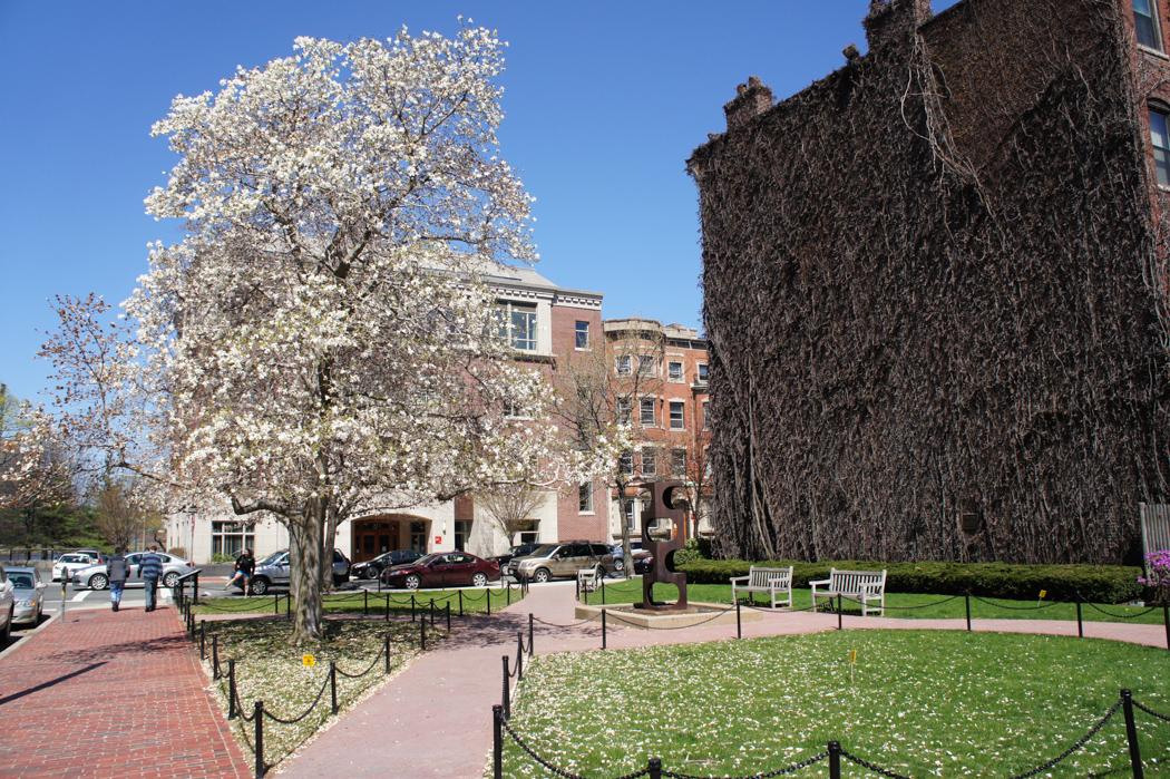 Printemps Boston University