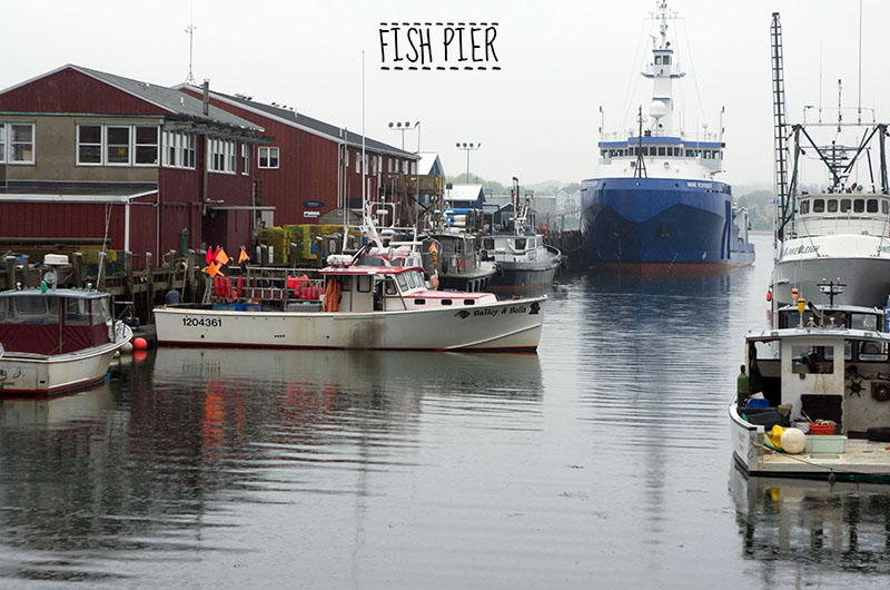 Fish Pier Portland