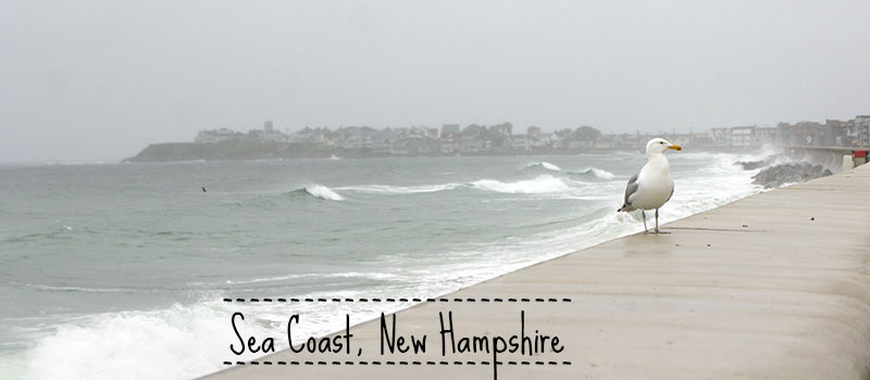 Sea Coast New Hampshire