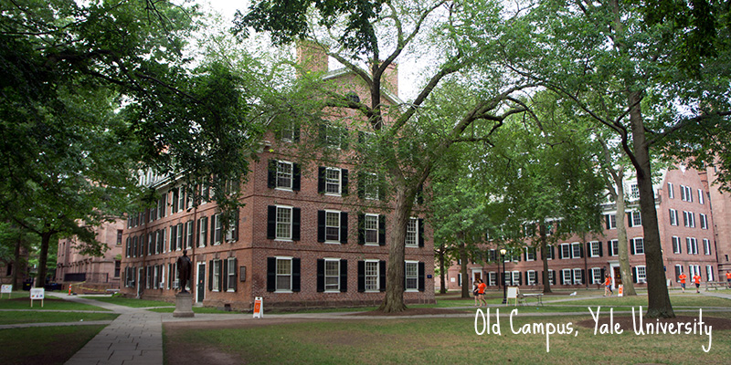 Old Campus Yale University