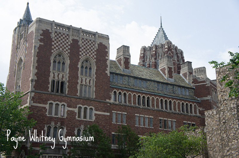 Gymnasium Yale University