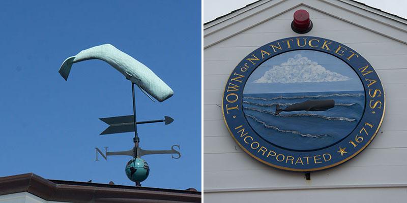 Nantucket baleine