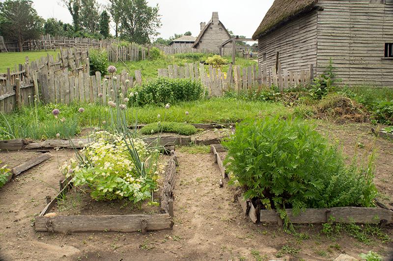 Plimoth Plantation 1