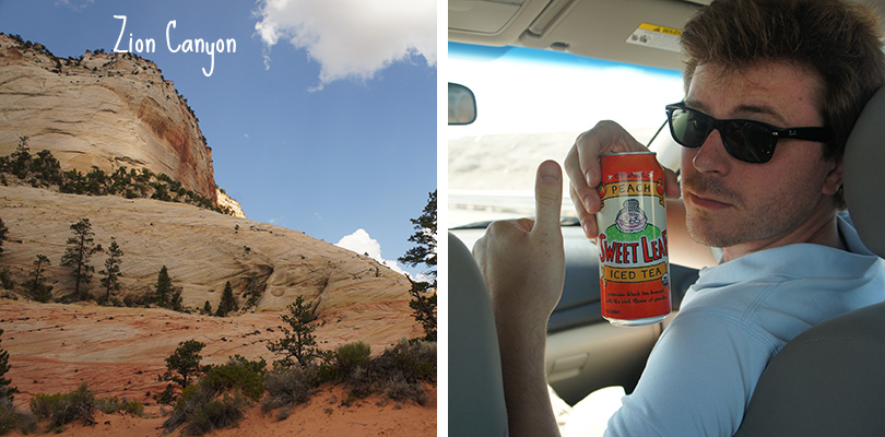 Road trip entre amis - Zion Canyon