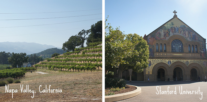 Road trip entre amis - Napa Valley and Stanford