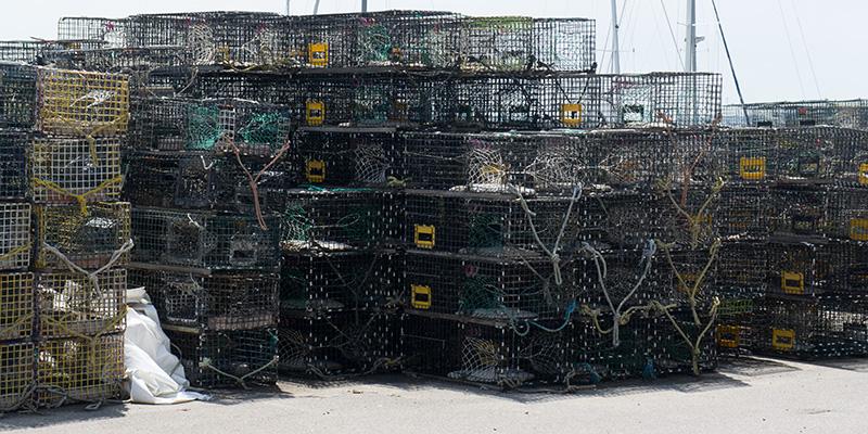 Lobster traps Stonington CT