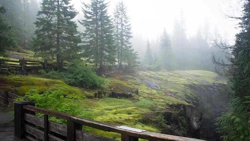 Box Canyon - Mount Rainier National Park
