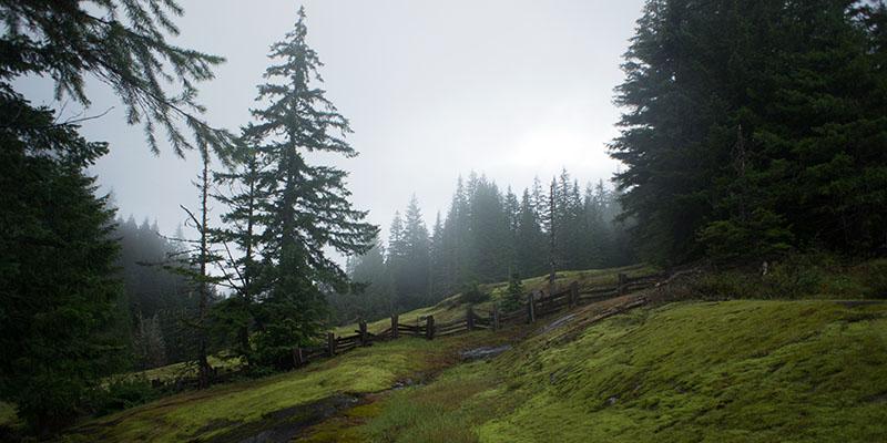 Box Canyon - Mount Rainier National Park 1