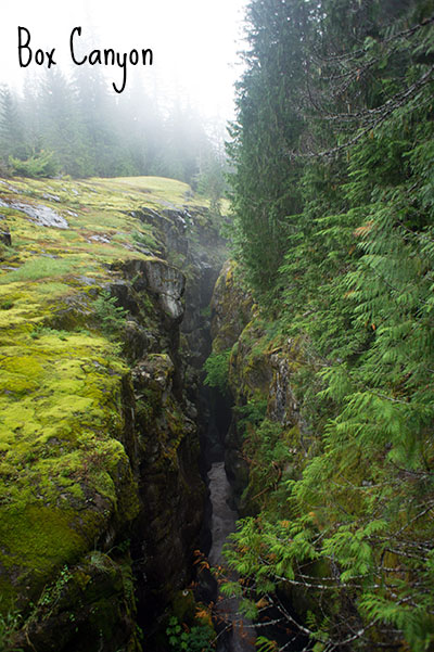 Box Canyon - Mount Rainier National Park 2