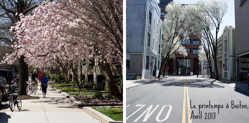 Le printemps à Boston