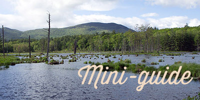 mini guide du new hampshire