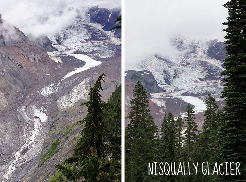 nisqually glacier - Mount Rainier National Park