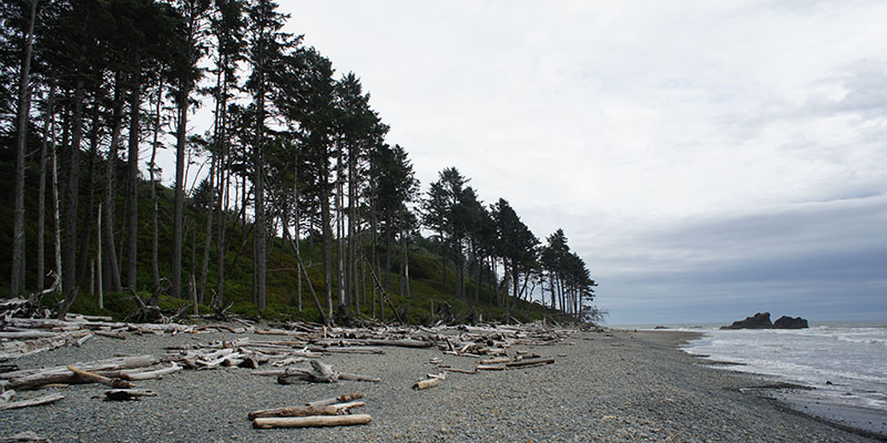 Ruby Beach - Olympic National Park 3