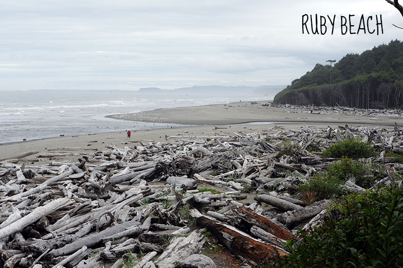 Ruby Beach - Olympic National Park 4