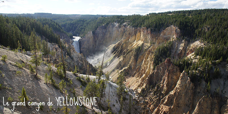 Le grand canyon de Yellowstone 1