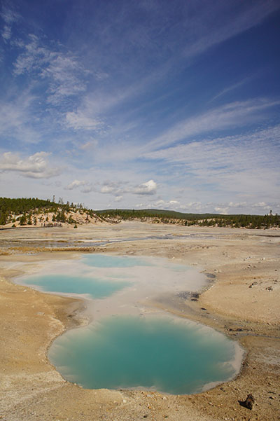 Norris Geyser Basin - Yellowstone National Park - pool