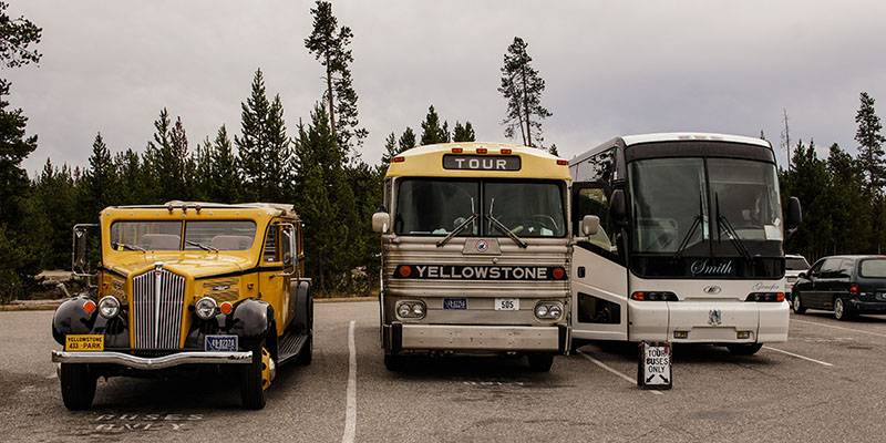 Bus - Yellowstone National Park