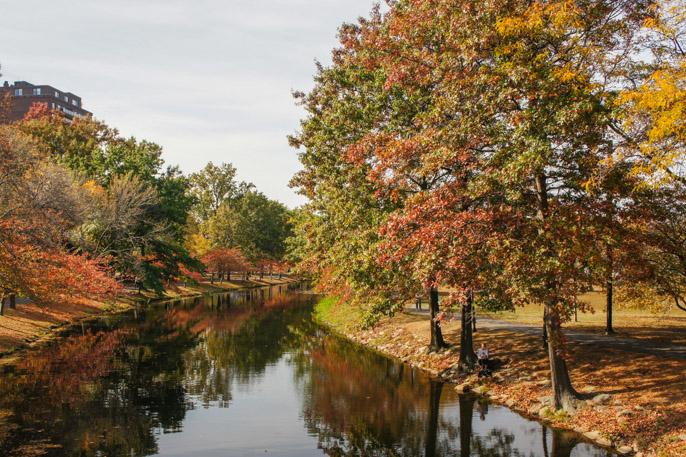L'automne à Boston - l'été indien