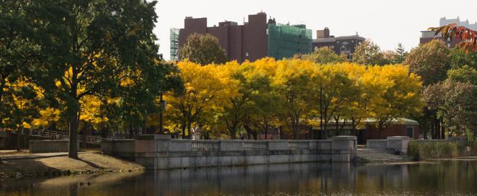 L'automne à Boston - l'été indien 2