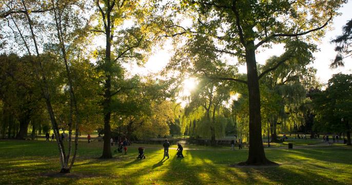 L'automne à Boston - l'été indien - sunset