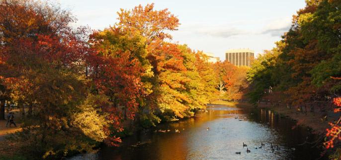 L'automne à Boston - l'été indien - rivière