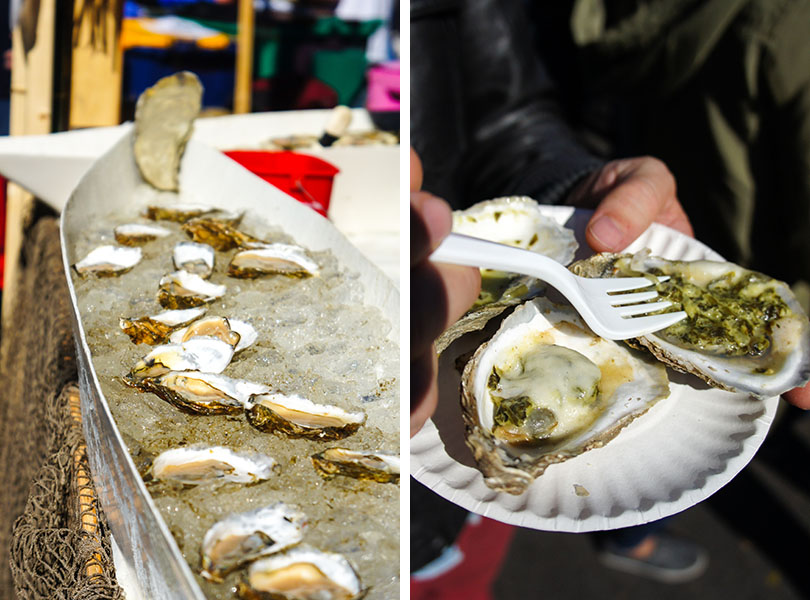 Oysters - Oyster Fest Wellfleet, Cape Cod