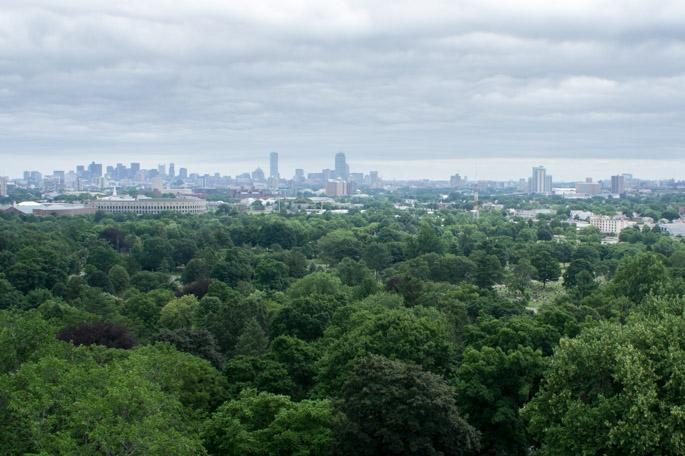 Mount Auburn cemetery - vue sur Boston
