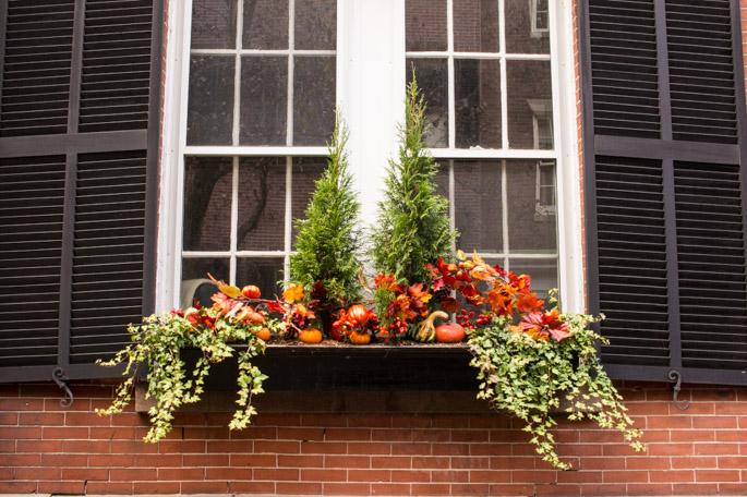 Balcon - Beacon Hill, Boston 6
