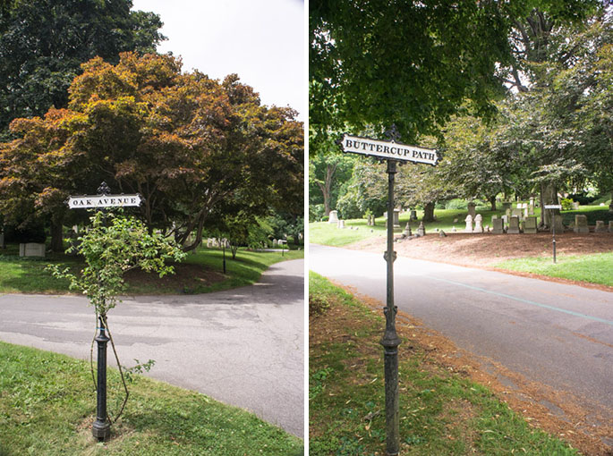 Chemins - Mount Auburn Cemetery
