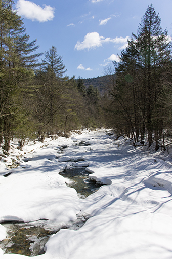 Berkshires - rivière gelée