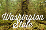 Washington stateWashington state