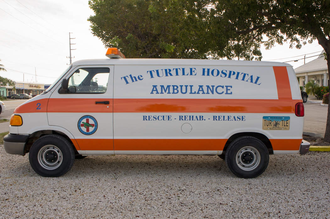 The turtle hospital ambulance