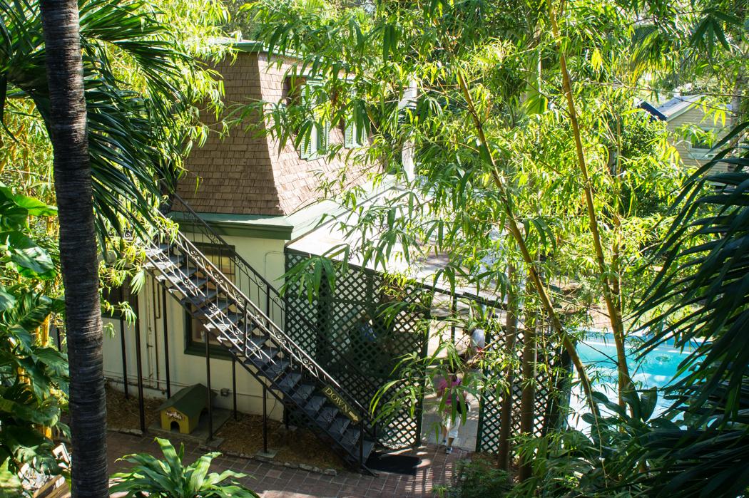 Atelier d'Hemingway - Key West