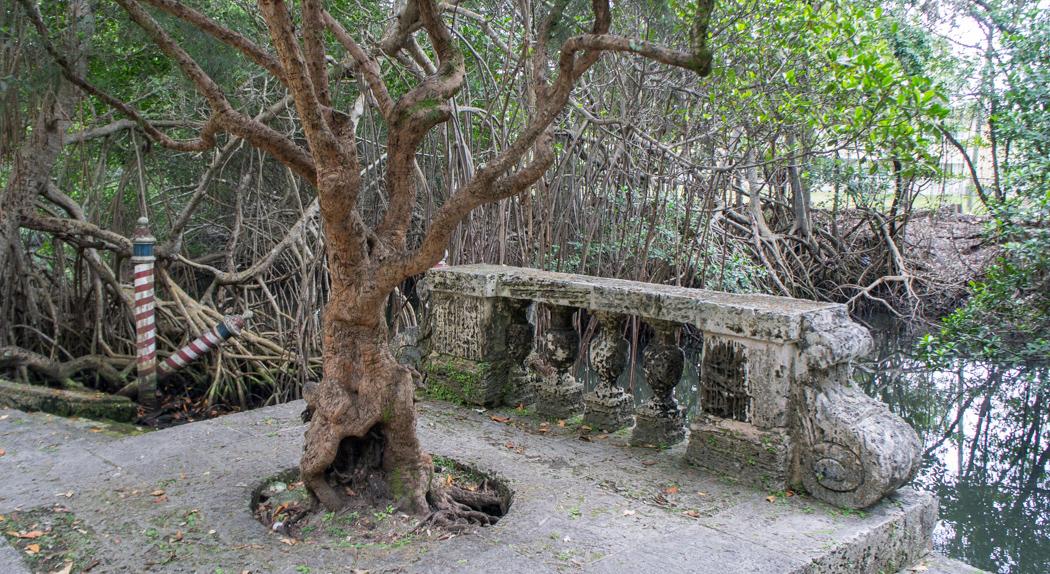Villa Vizcaya - Coconut Grove - Miami -Floride - mangrove