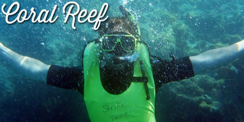Faire de la plongée dans les Keys - Visiter la Floride